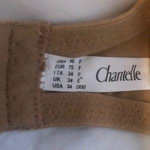 Chantelle Intimates & Sleepwear - CHANTELLE LACE DESIGNER BRA CREAL SZ 34 DDD